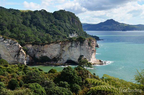 Cathedral Cove Coromandel
