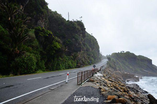 carretera nueva zelandad