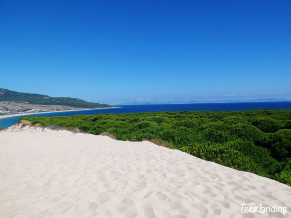playa bolonia6