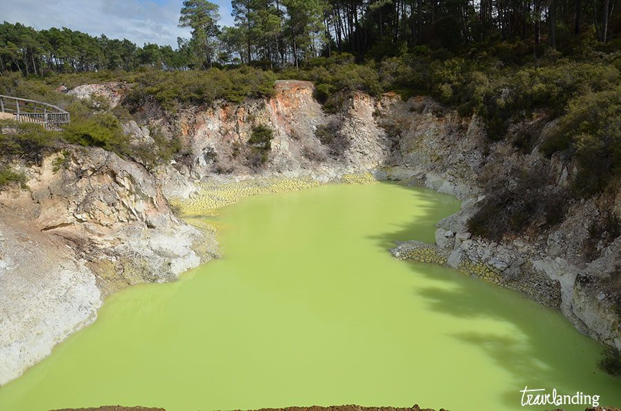 lago-verde-rotorua