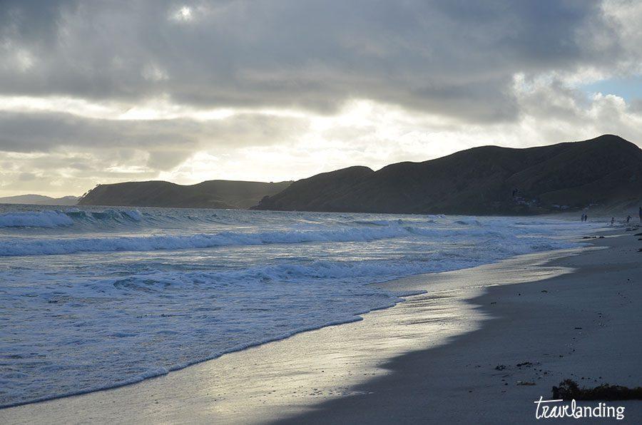 playas-nueva-zelanda
