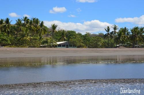 refugio-nacional-playa-ostional