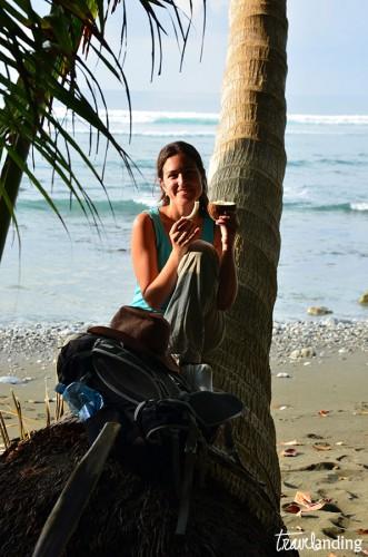 coco-costa-rica