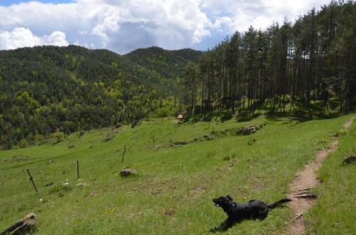 montaña 7 gorgs