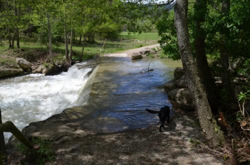 rio para cruzar 7 gorgs