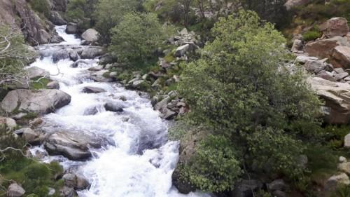 rios queralbs