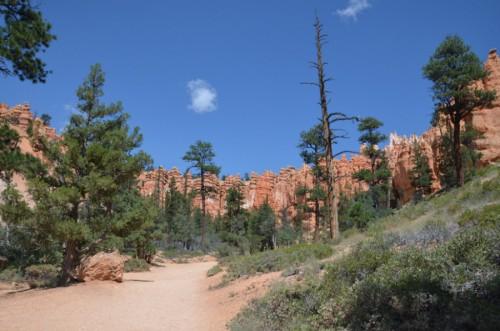 parque natural costa oeste