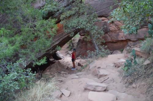 zion canyon park