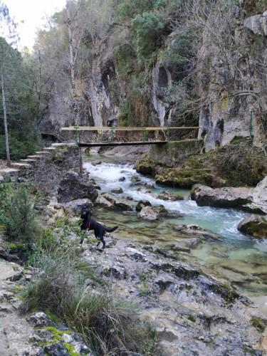 rio borosa ruta