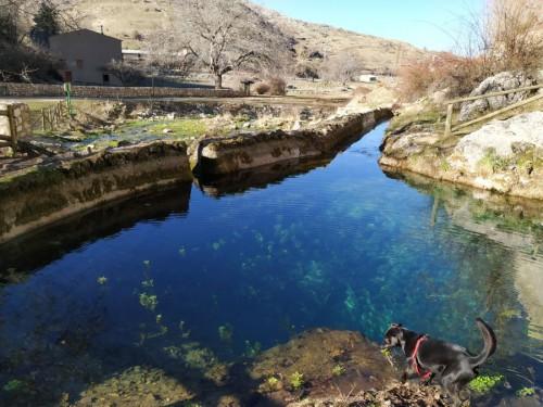 nacimiento rio borosa
