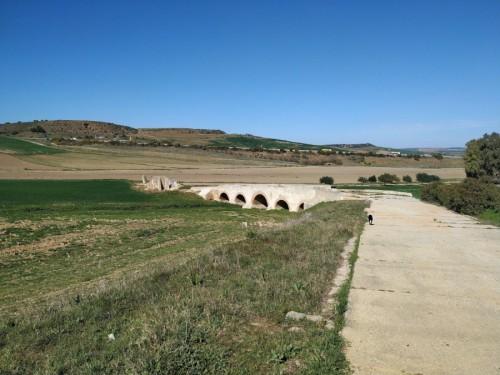 puente romano carmona