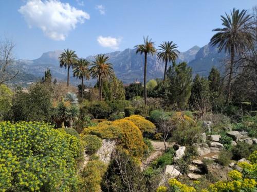 jardin botanico soller