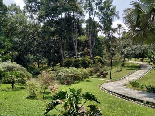 jardin botanico kl