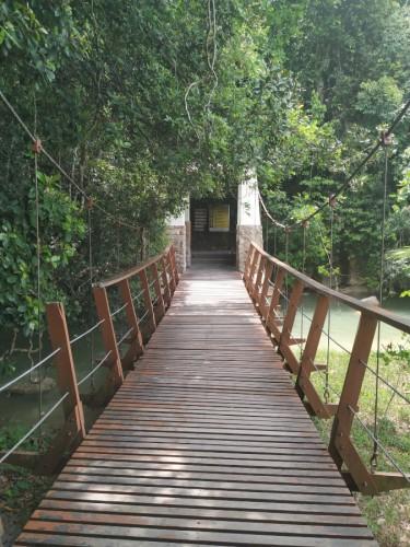 taman negara penang (1)